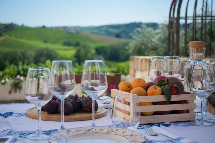 View across an Abruzzo vineyard
