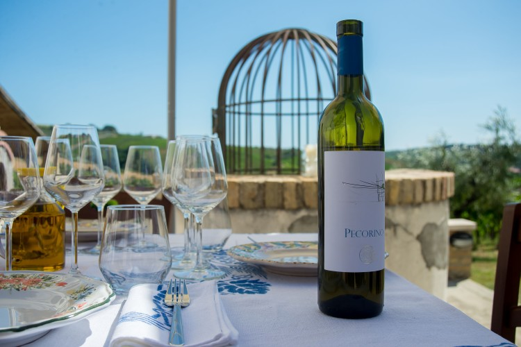 Bottle of Pecorino against view background