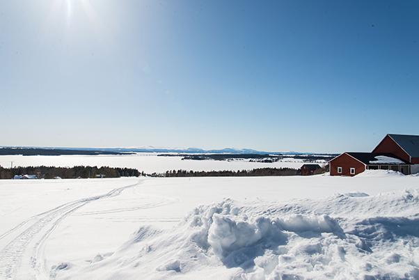 Frozen lake near Östersund Sweden
